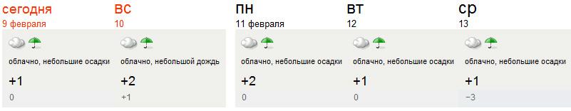 Питерская зимняя погода